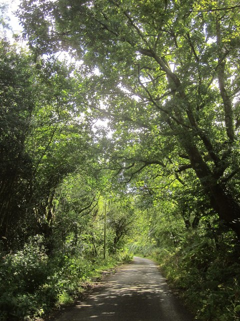 Lane near Little Wooston