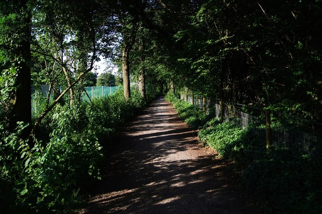 Multiuser path by Well's Copse