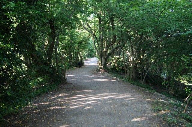 Multiuser path above railway cutting