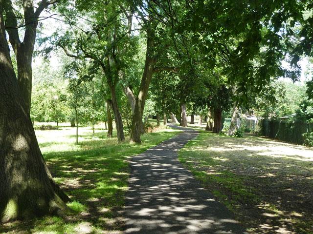 Shady path, Norbury Hall Park