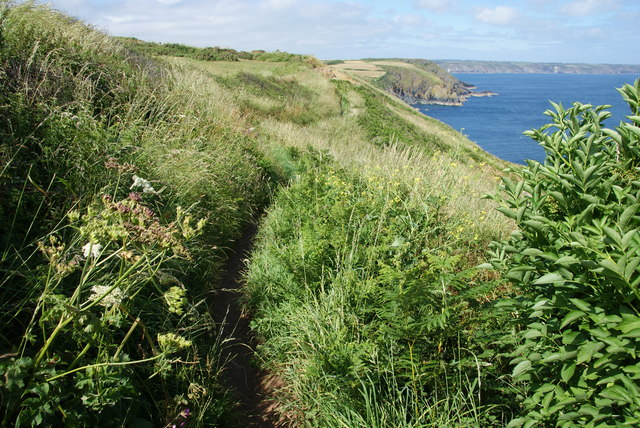 The South West Coast Path above Chough's Ogo