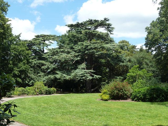 Norbury Hall Park