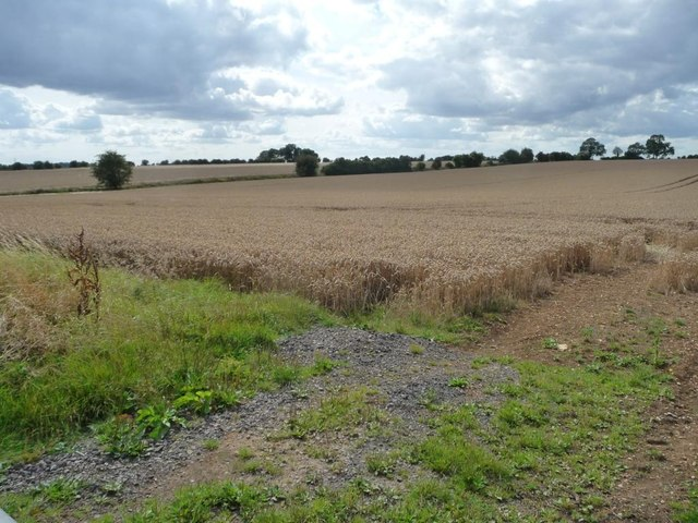 Entrance to the wheatfield north of Leyes Farm