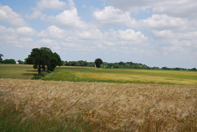 An arable landscape
