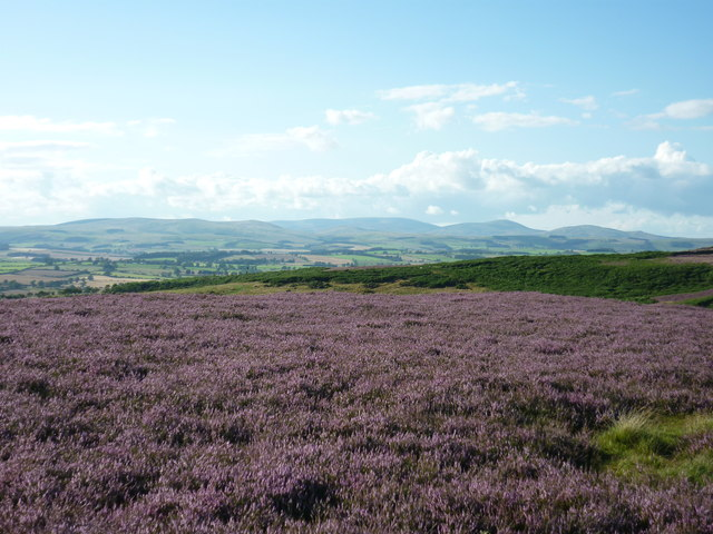 From Glitteringstone to the Cheviots