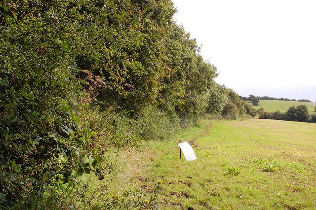 Bridleway by Hawe's Wood