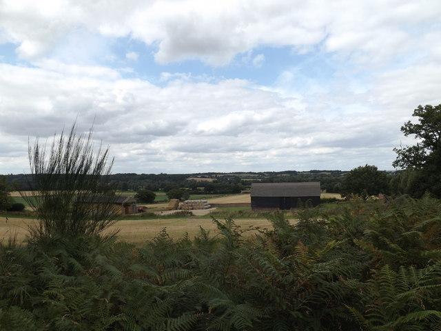 Looking towards Lower Farm
