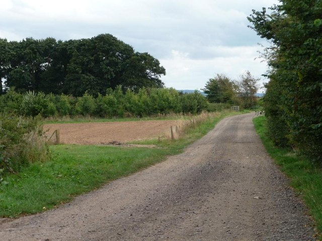 Track and public footpath to Portway Barn