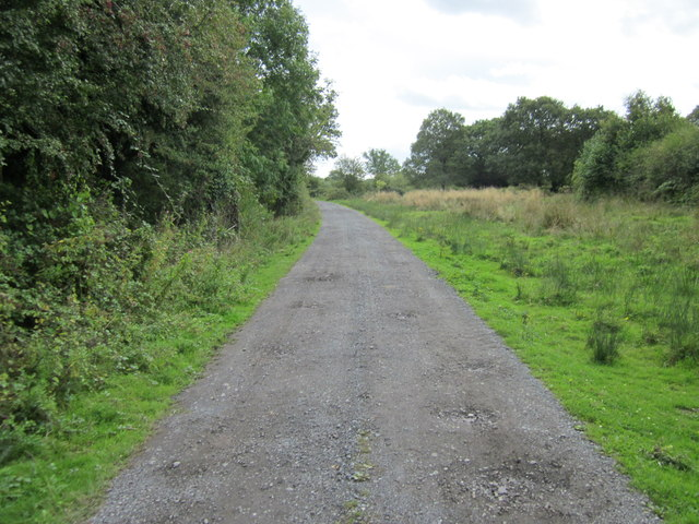 Footpath at Bradley Green