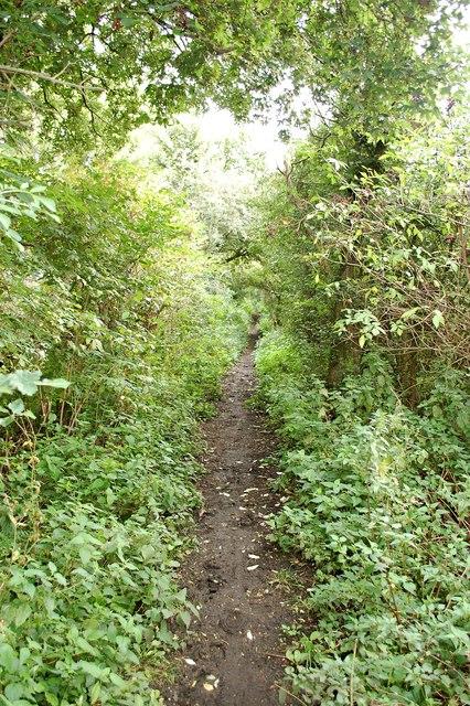 Bridleway near Honeywood Farm