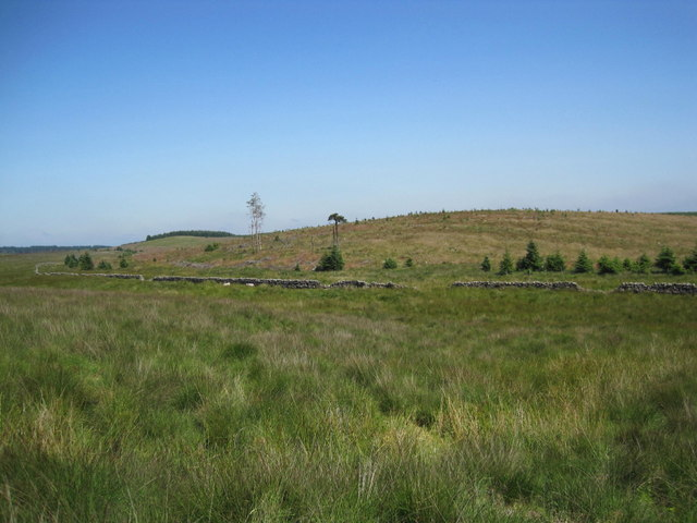 Open Access Land, Trenchgap Fold