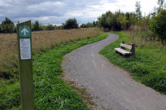 Cycle path in Shellbrook Woods