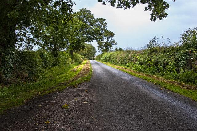 White Horse Lane