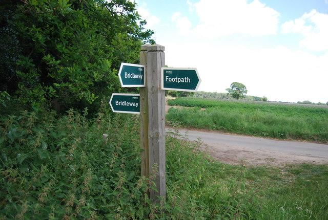 Bridleway, footpath junction