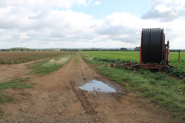 Farm Track near Pyewipe house