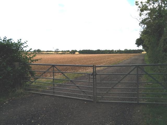 Field between Comberton and Toft