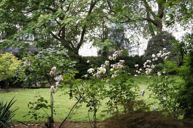 Chesham Place Gardens