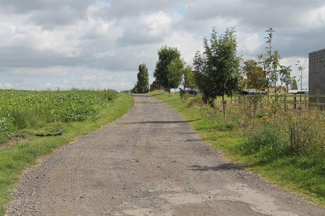 Farm Track off Clay Lane