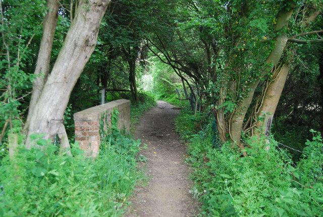 Footbridge, Vanguard Way