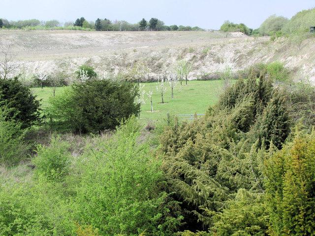 Looking over Juniper Valley towards the Millennium Orchard in 2010