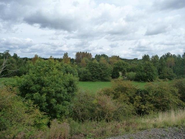 Wooded farmland, north-west of Claverdon Lodge