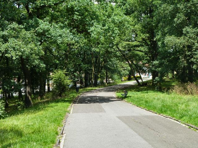 Road in Grangewood Park