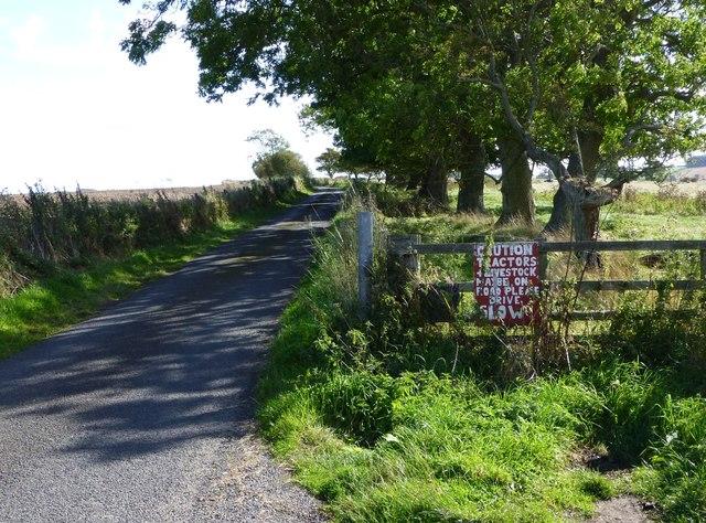 Warning sign on narrow road