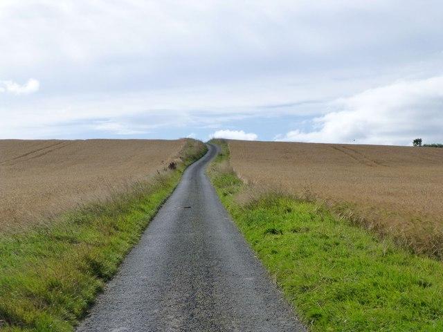 Drive through the barley