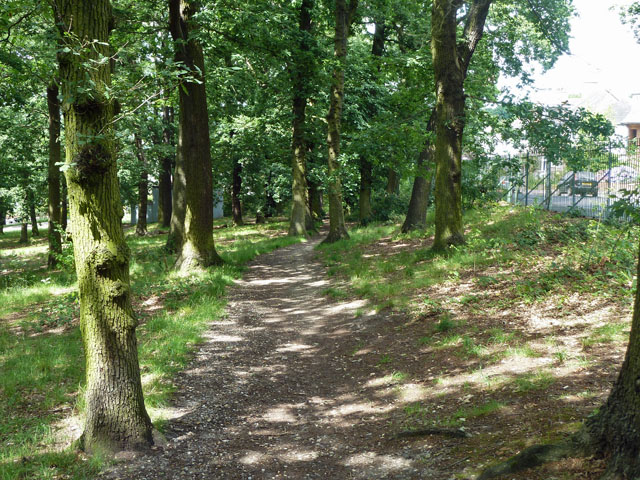 Path in Grangewood Park