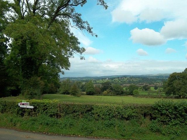 Grassland near Rocester