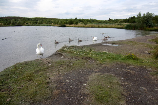 Ponds near Overseal
