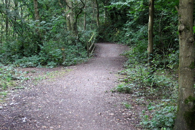 Path into Swainspark Woods
