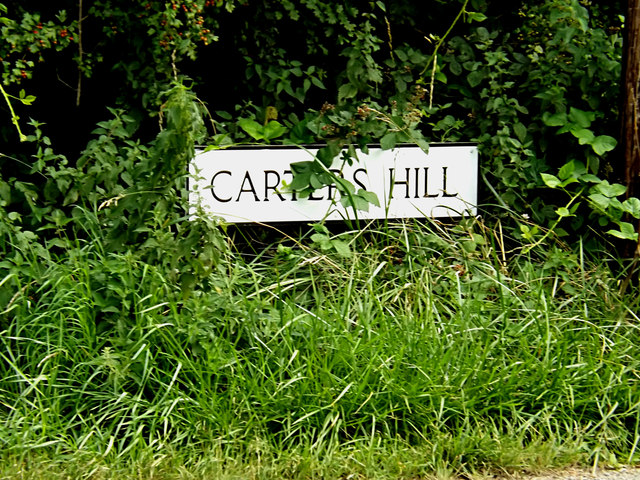 Carters Hill sign