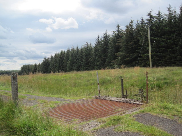Cattle Grid at Gowk Bank
