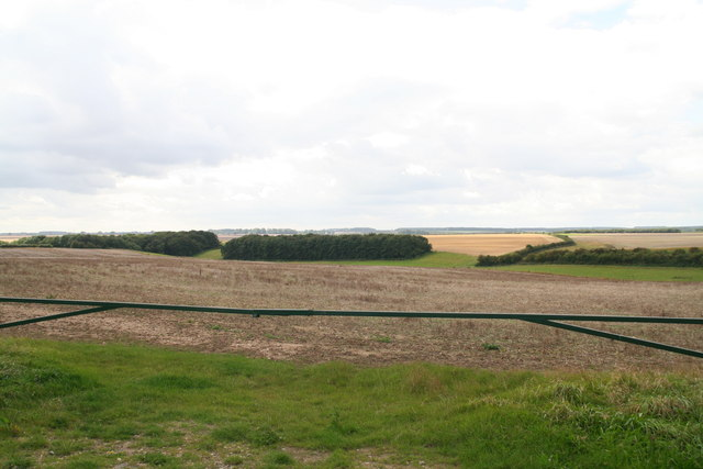Wooded valley sides in the Lincolnshire Wolds east of Cuxwold
