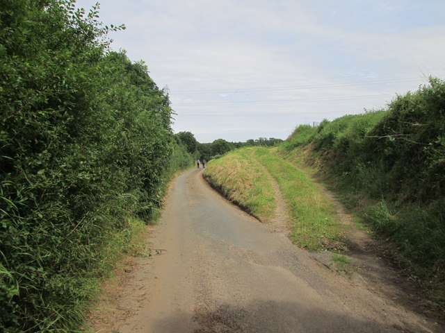 Track  up  to  fields  from  Low  Lane