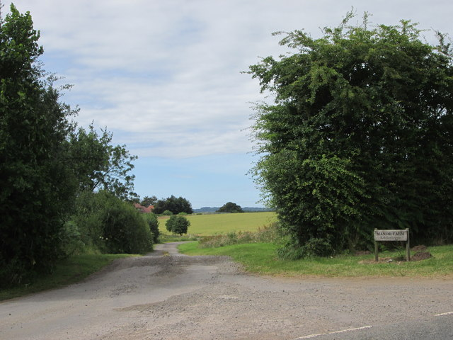 Southern  access  road  to  Manor  Farm