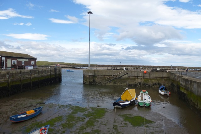 Warkworth Harbour