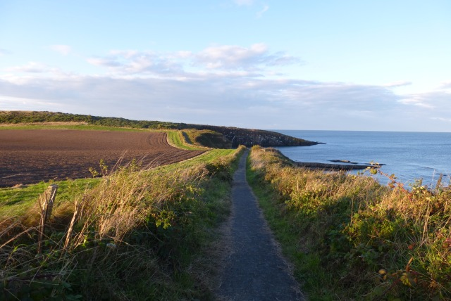 Nearing Cullernose Point