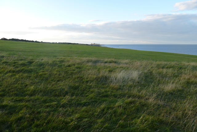 Farmland from the coast path
