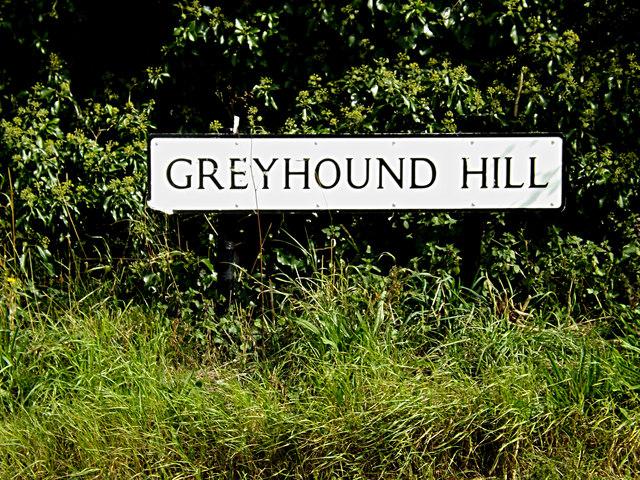Greyhound Hill sign