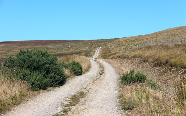 Road leading to Craigton in upper Strath Brora