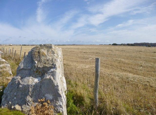 Southwell, stubble field