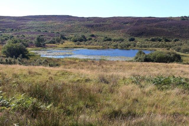 Little Rogart Loch