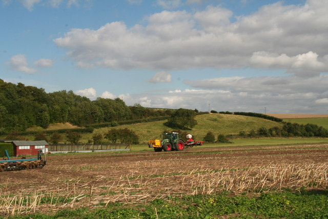 Looking across the back road which runs to Cuxwold from Ash Holt