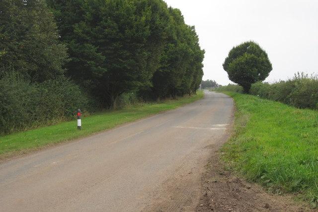 Orton lane by the farm