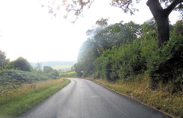 Bradenham Wood Lane south of Yewtree Hill Plantation