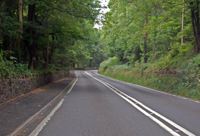A29 through Big Plantation near Pen Hill