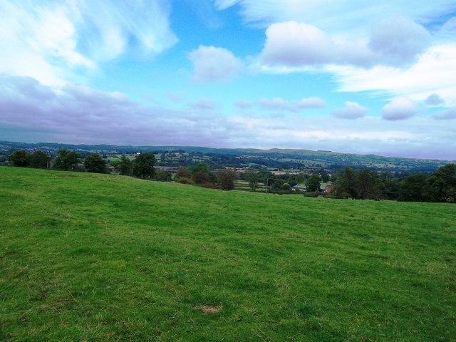 Pasture near Cubley Lane
