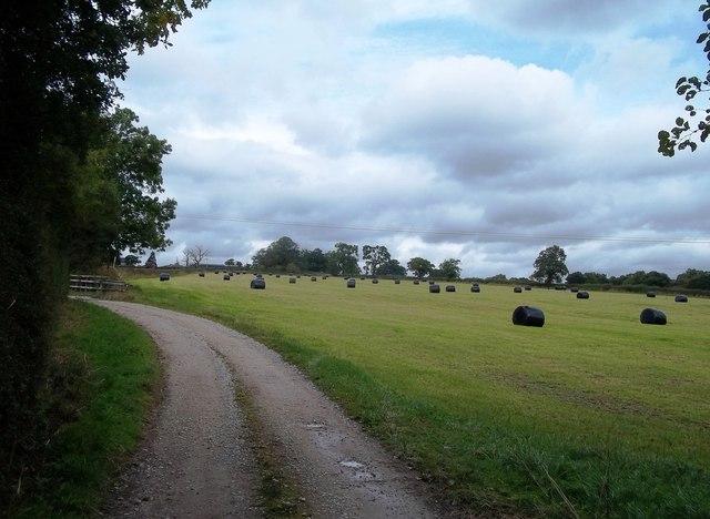 Track to Marston Lodge